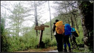 塔塔加:麟趾山、鹿林山、鹿林前山