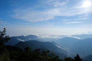 水青岡換新裝~探索太平山的原始森林