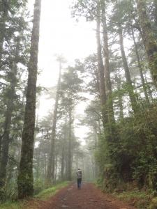 嘉明湖-天使的眼淚-向陽,三叉山