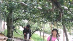 武法奈尾山-天巒池