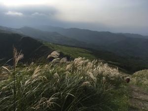 草嶺古道+桃源谷