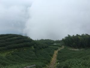 雲嘉大尖山(挑筍古道)