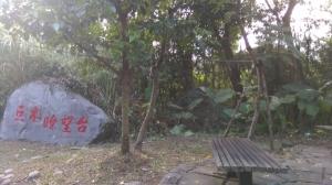碧溪步道+樹之亭(士林樹屋)