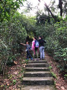 鐵砧山登山步道