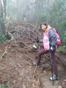 20180203唐麻丹山O型+蝴蝶谷
