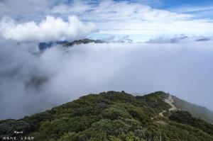 合歡山東峰雲海
