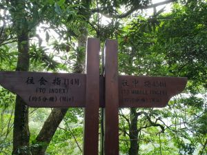 2018/07/04新竹五指山