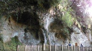 季節限定旅人的夢幻體驗 〜 杉林溪