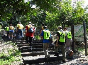 【活動】森林護管員忙什麼? 731到九九峰生態藝術園區一次看個夠