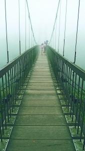 步道小旅行-陽明山冷水坑