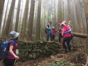 李崠山連走大混山很棒的林道