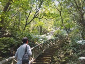 逸仙山登山步道