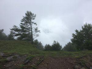 麟趾山鹿林山