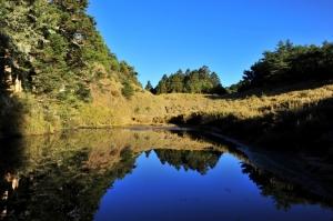 【南投】天巒池
