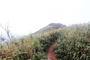 聖母山莊+三角崙山 美麗境界尋仙蹤 !