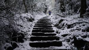 大屯主峰連峰步道,銀白世界的震撼