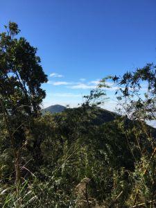 雲林大尖山、二尖山步道