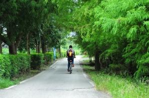 【旅遊】南華小村子單車散步