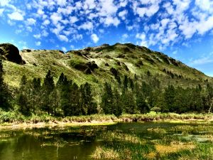 【湖景步道】陽明山夢幻湖步道