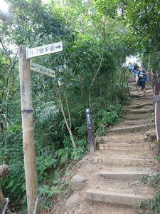 大坑步道3+2