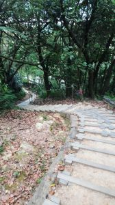 大同山步道