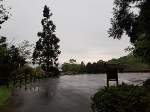 東眼山國家森林遊樂區106/04/23