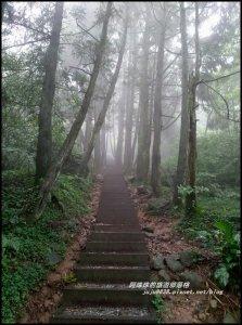 冷水坑絹絲瀑布步道