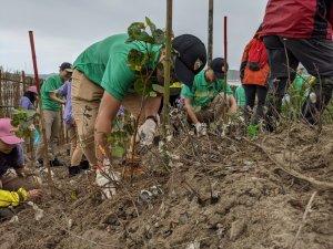 【新聞】玉山金控捐款推動海岸林造林計畫