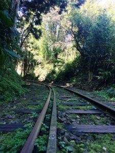 尋訪遠離河床平坦安全的聖地:十字路走得恩亞納O形