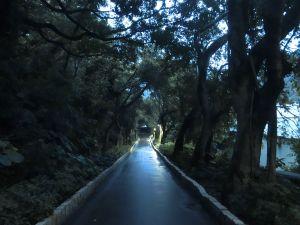 牡丹心步道