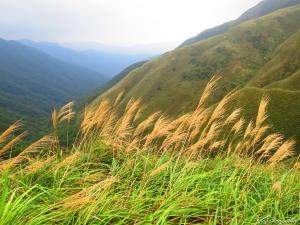 【山岳之美】~20141130~聖母登山步道
