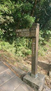 1070401高速攻頂(大崙頭山)