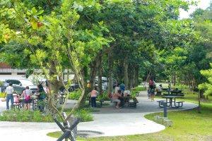 【新聞】雙流國家森林遊樂區提供無障礙友善遊憩環境 讓您親近自然暢行無礙