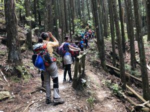 馬崙山~走不完感覺的五星級森林步道