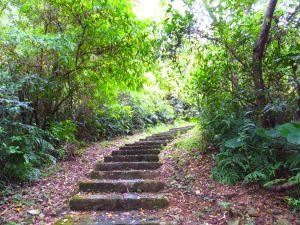 【宜蘭冬山】走仁山步道 賞西式庭園