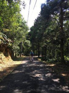 古道巡禮-雙溪至外澳