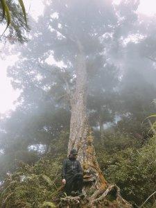 10/22金柑樹山&忘憂森林尋幽探訪之旅