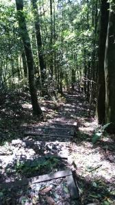 鳶嘴山步道