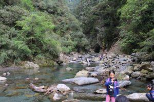 合歡溪步道,非常適合森林浴