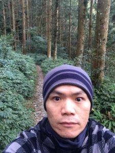 北大武-檜木森林