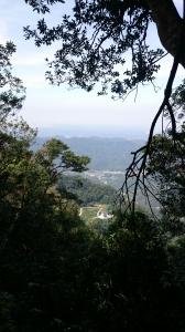 仙山登山步道