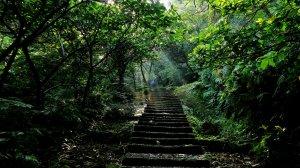 走進幽幽的歷史長廊~淡蘭古道朝聖之路