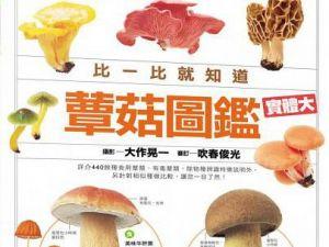 【書訊】蕈菇圖鑑