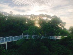 早晨的八卦山天空步道