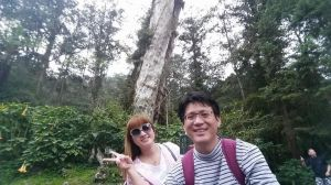 南投溪頭森林浴步道