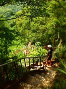 赤水崎步道。田中森林步道環形走