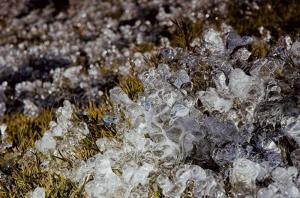 【山岳之美】南華山結冰了