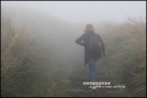 七星山東峰步道