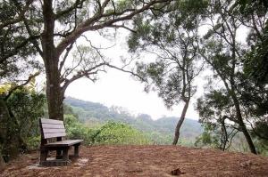 【台南】林安森林公園登山步道