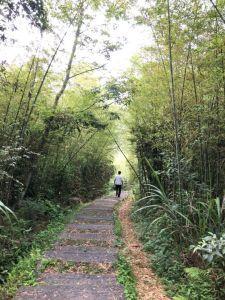 孝子路步道
